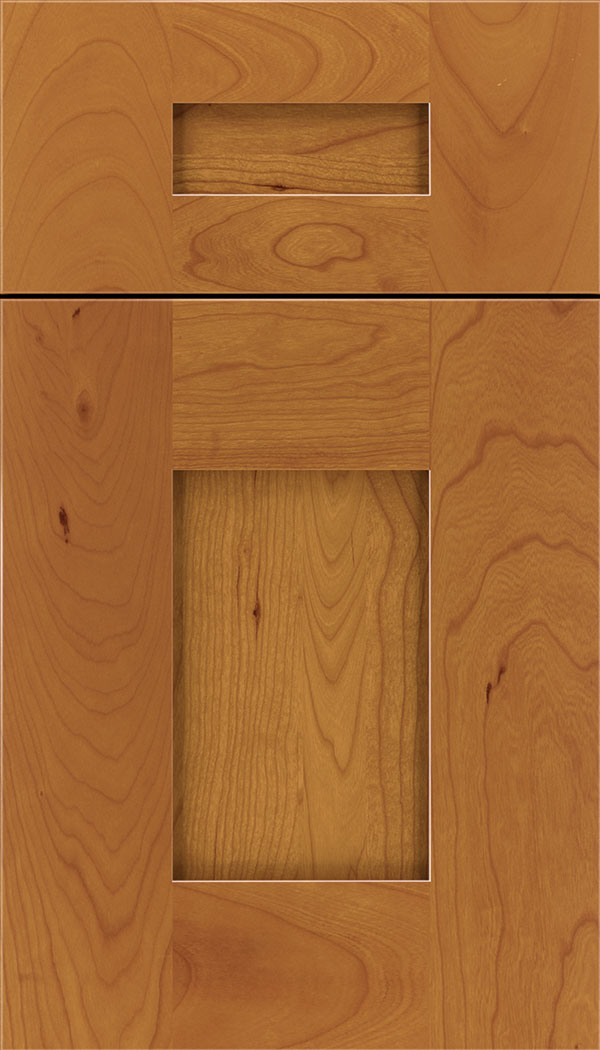 newhaven_5pc_cherry_shaker_cabinet_door_ginger
